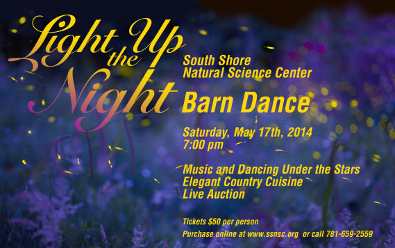 Light Up the Night Barn Dance