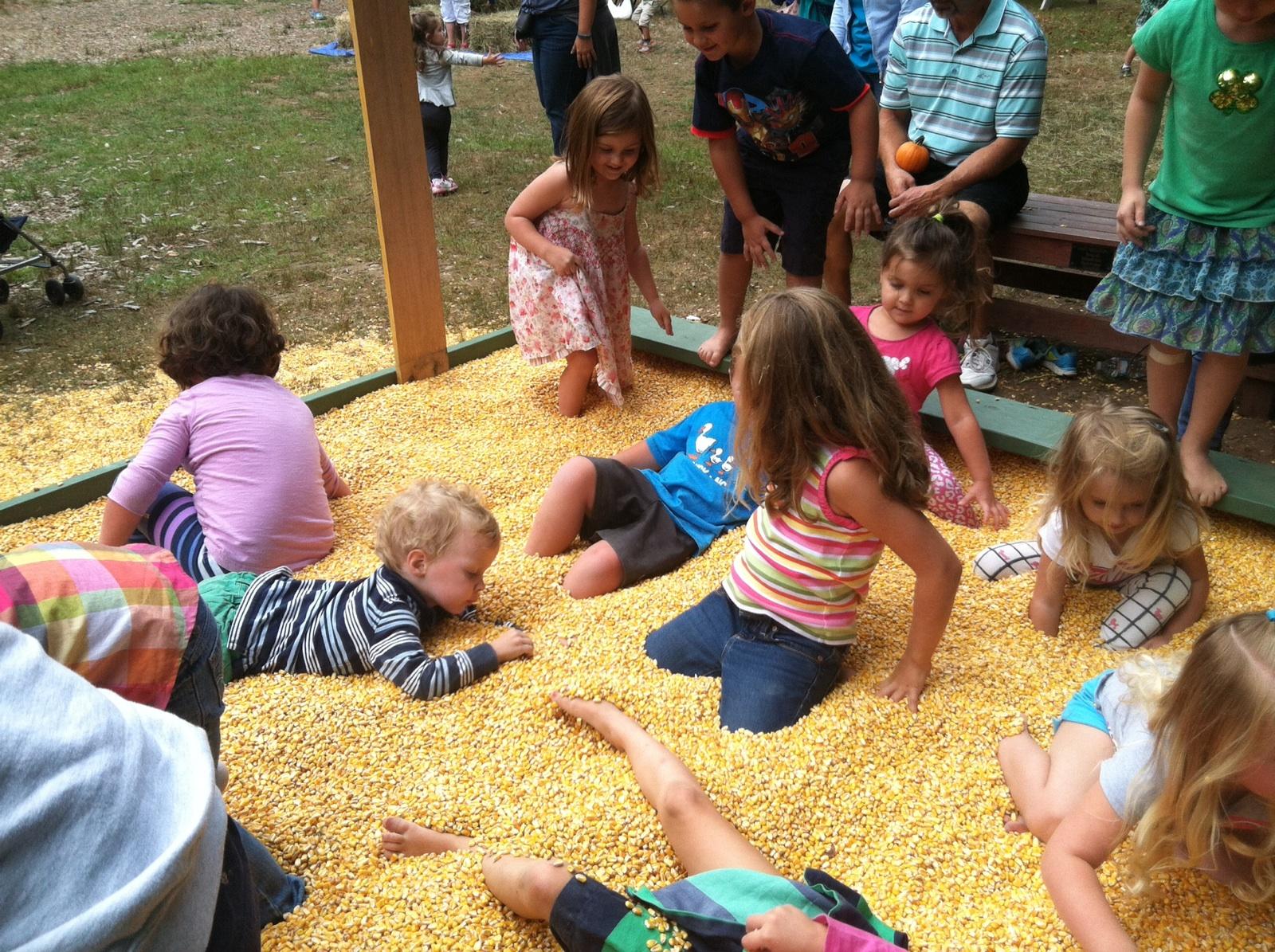 South Shore Natural Science Center Corn Festival